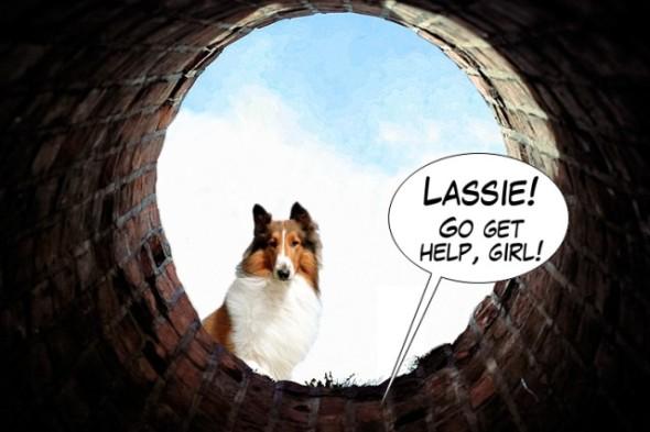 LassieBottomOfWell