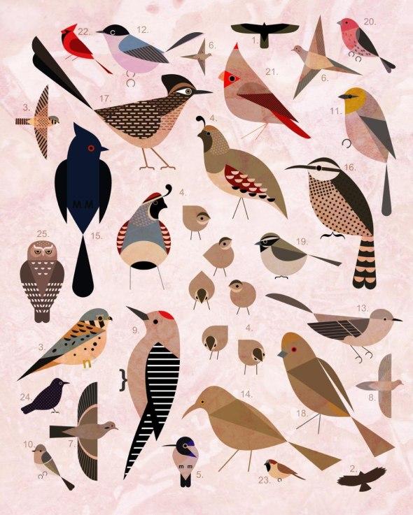 bird-by-bird-collage